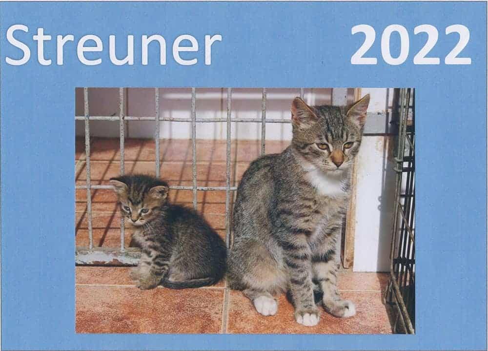 Katzen Deckblatt mit Kitten 22
