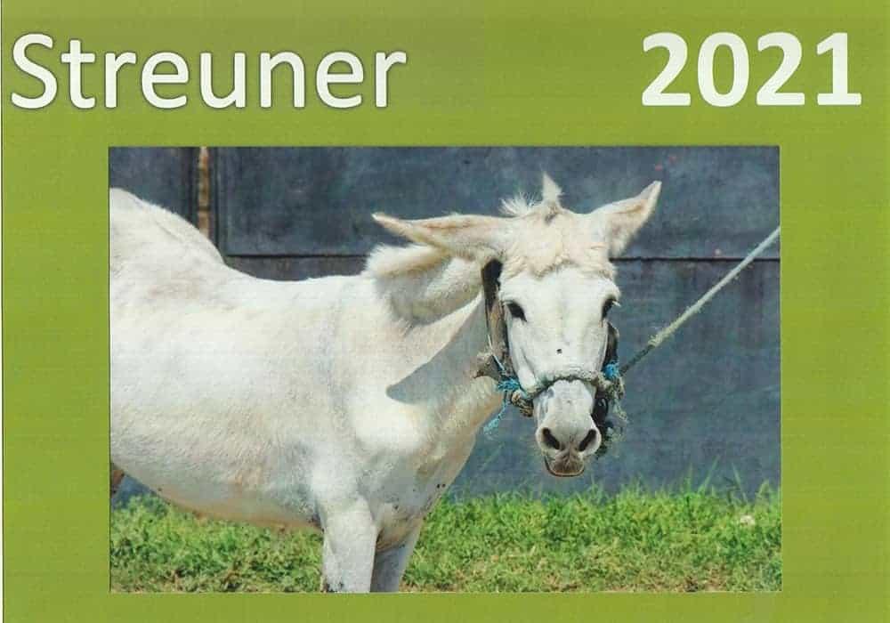 Pferd 2021