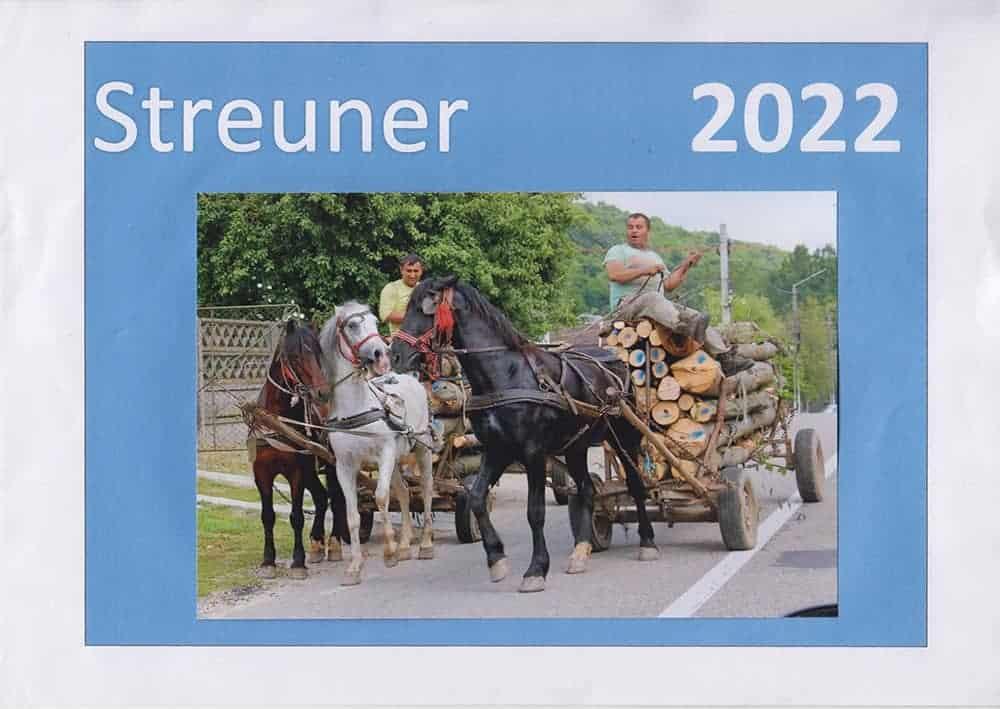 Pferde 22