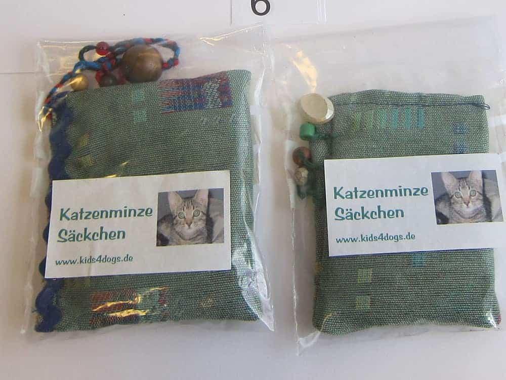 6 Katzenminze je nach Größe 3€ – 5€